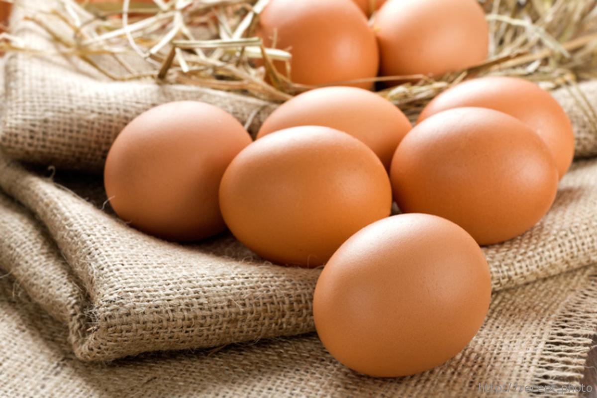 Антимонопольный комитет не собирается разбираться с ценами на яйца