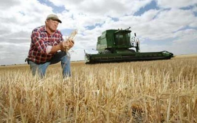 Правительство намерено аграриям ограничить размер дотаций