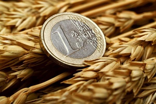В Украине выросли средние зарплаты аграриев