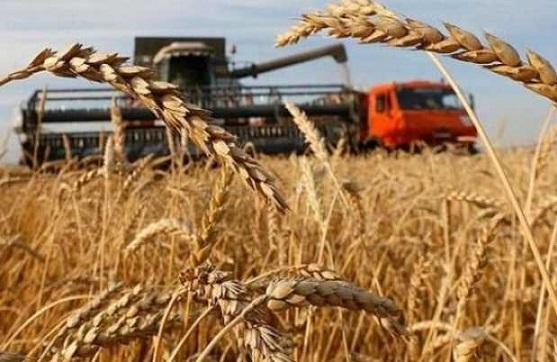 ГПЗКУ во время весеннего форварда проавансирует аграриев почти на 1,5 млрд грн