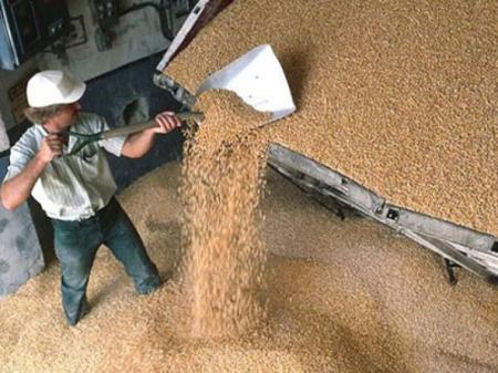 В Украине на три года продлили зерновую НДС-льготу