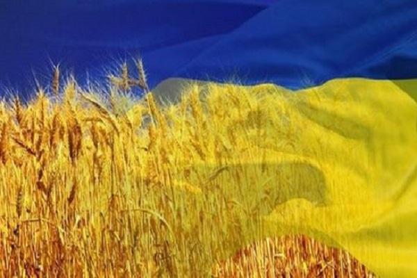 ТОП - 5 покупателей украинской агропродукции - Минагрополитики