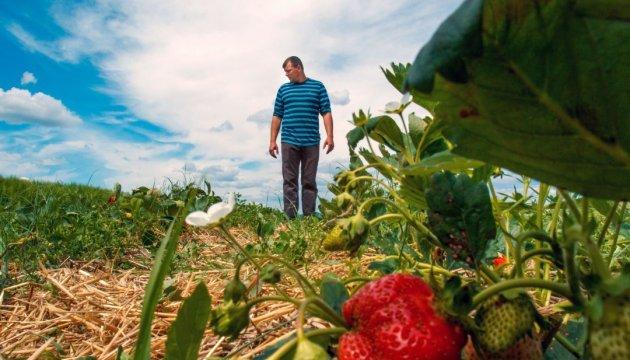 Кабмин обязал фермеров платить ЕСВ