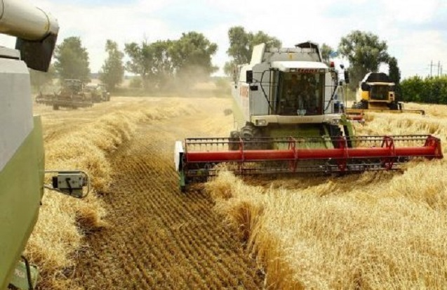 Аграрии уже намолотили почти 47 млн тонн зерна