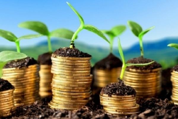 В украинском АПК реализовывается 333 инвестпроекта на 35 млрд грн
