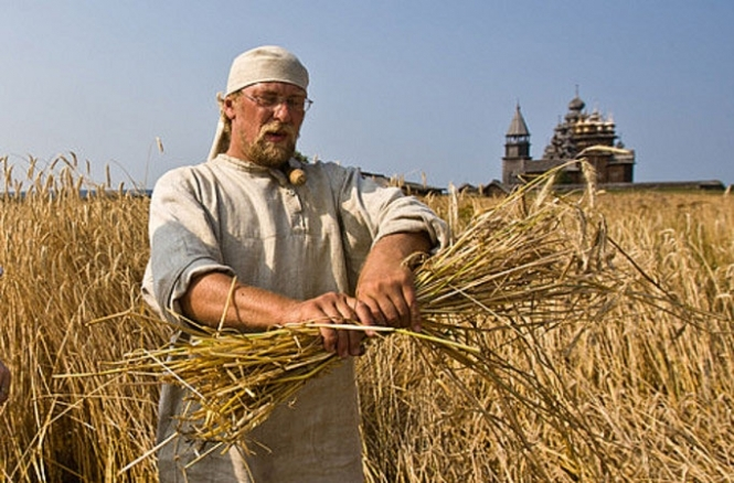 Аграрии принесли стране почти  $12 млрд