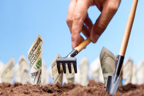 В новом сезоне «ОККО Агротрейд» профинансирует аграриев на 3 млрд гривен по упрощенным условиям