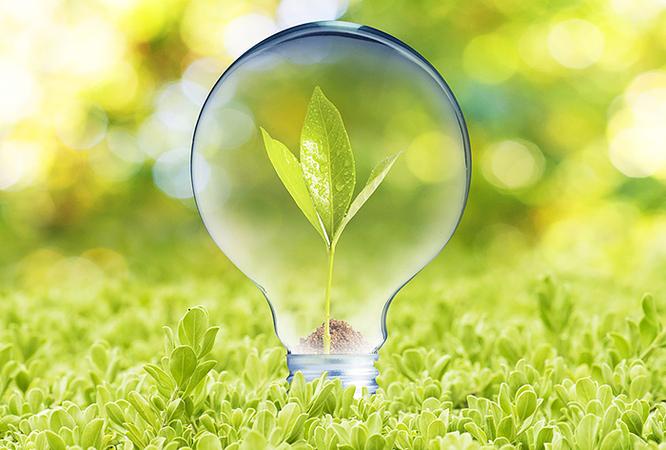 Кабмин может пересмотреть «зеленый тариф»