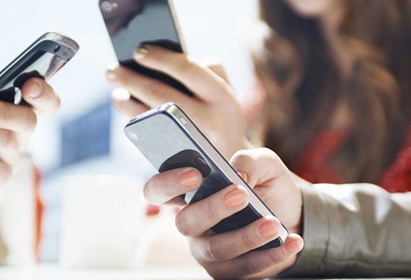 В Украине появилась мобильная версия сайта госреестра избирателей