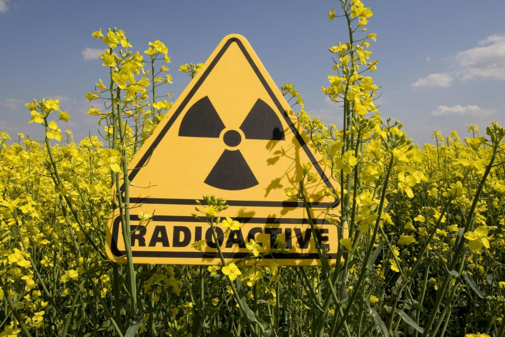 В Тернополе опровергли радиационное загрязнение в регионе