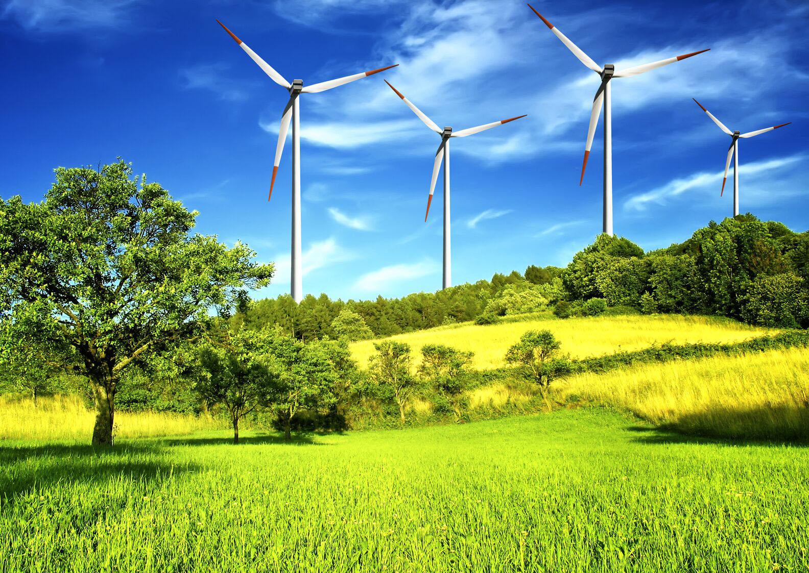 Google инвестирует рекордную сумму в возобновляемую энергетику