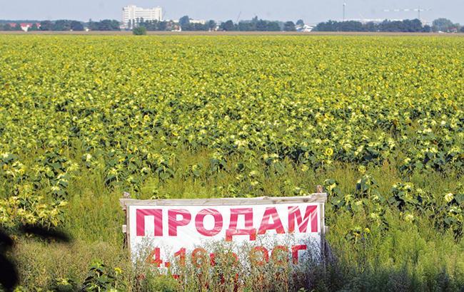 Порошенко подписал закон о земельном моратории