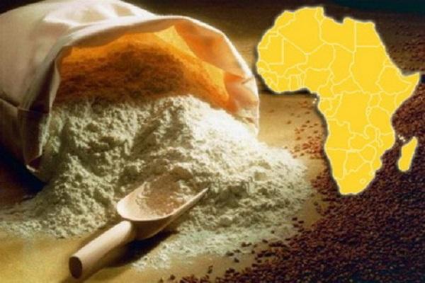 Украинская Мукомольная Компания открывает свои представительства в 4 африканских странах