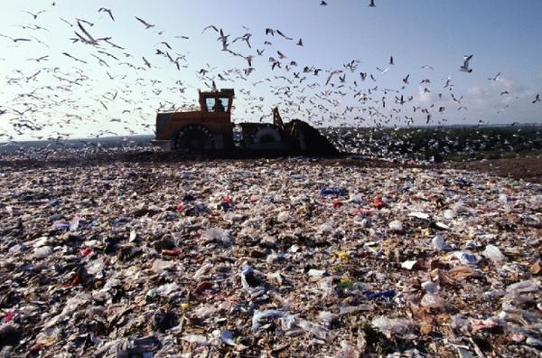 Стартовал конкурс на строительство мусороперерабатывающего завода во Львове