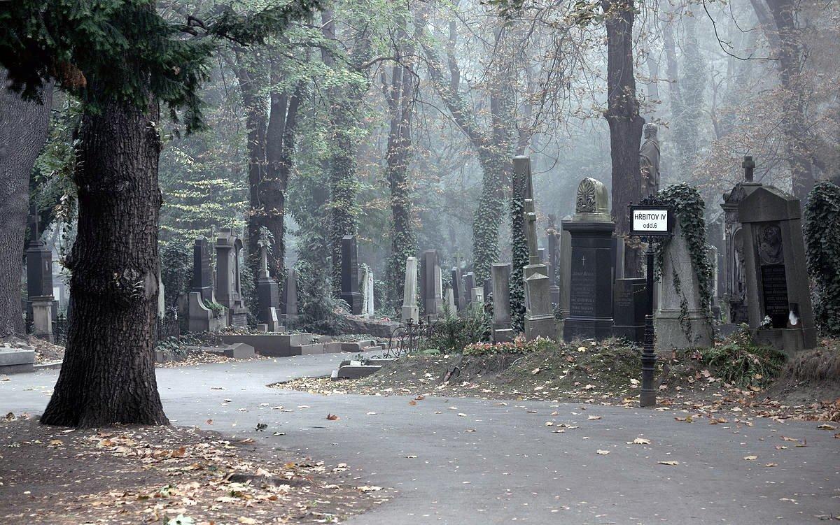 Порошенко поручил МИД разобраться с ситуацией эксгумации останков А. Олеся в Чехии