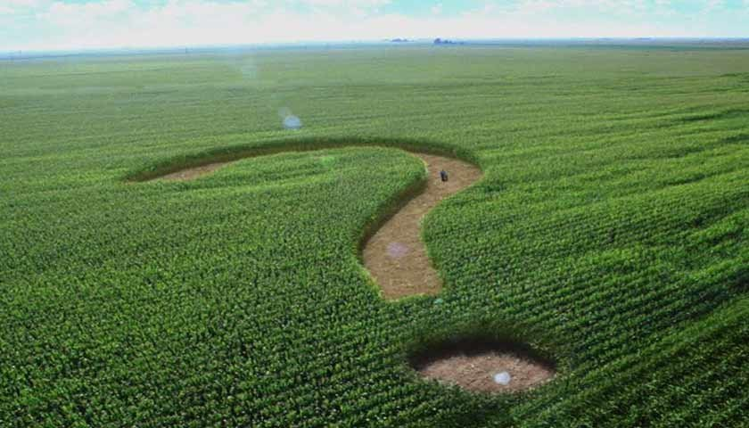 КСУ отказался оценивать мораторий на продажу земли