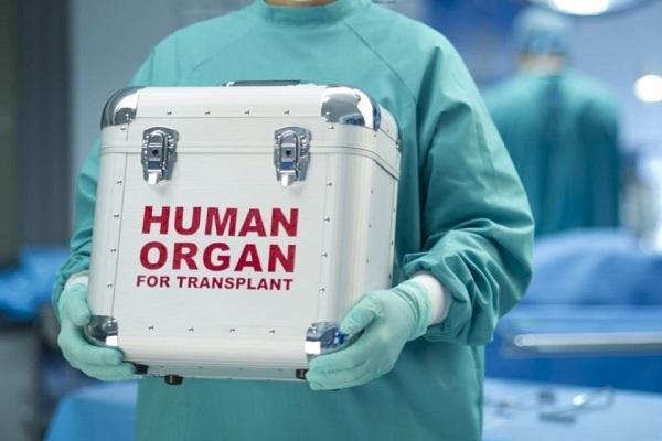 В Украине узаконили трансплантацию органов