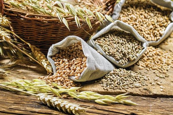 Аграрии собрали 3 млн тонн зерна нового урожая