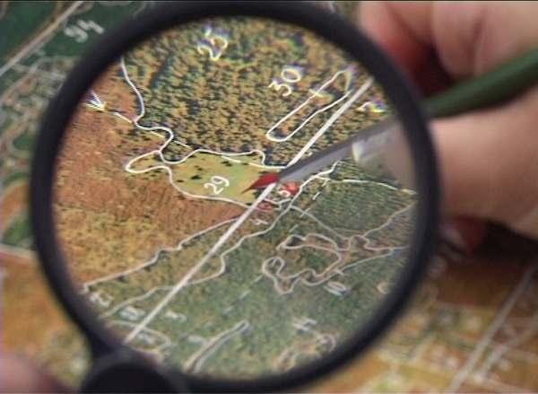 К захвату леса под Киевом могут быть причастны руководители СБУ, - СМИ