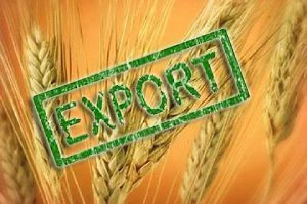 Экспорт зерновых перевалил за 30 миллионов тонн