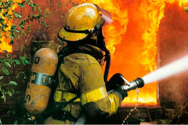 За текущий год в Украине от пожаров погибло более 1,5 тыс. человек