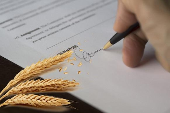 Аграрные расписки уже обеспечили свыше 35 миллиардов под залог будущего урожая