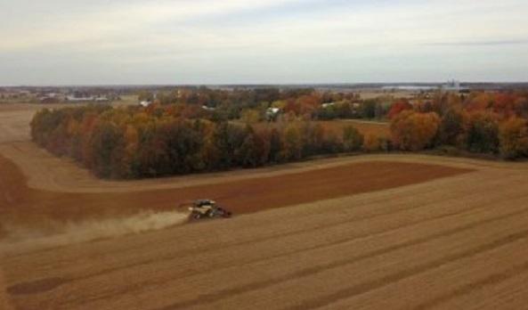 Аграрии засеяли яровыми 11% прогнозных площадей