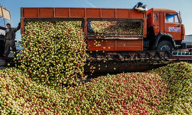 Украина увеличила экспорт соков на 60%