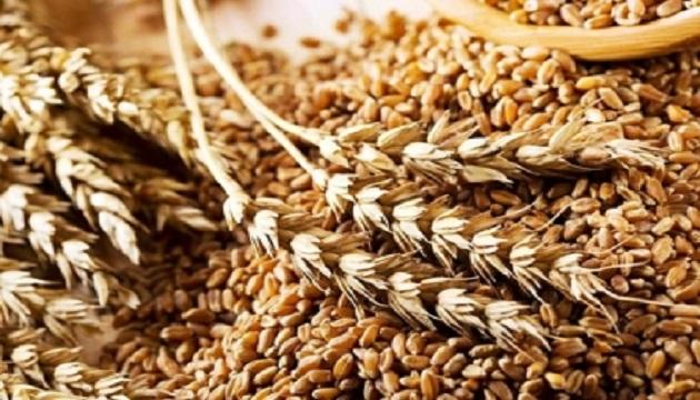 Продажа зерновых и масличных уменьшилась на 31% - Госстат