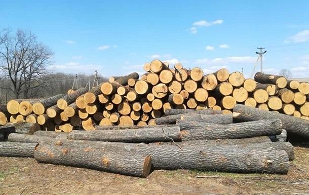 В Харьковской области украли леса на 24 млн грн