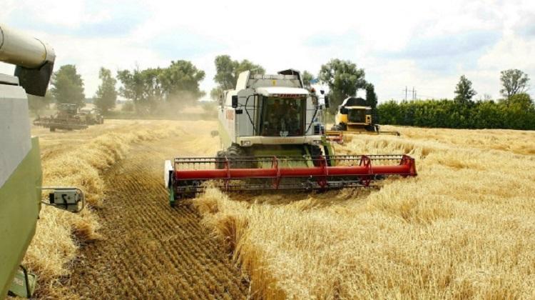 ГПЗКУ закупила почти на 329 миллионов зерна по форвардной программе