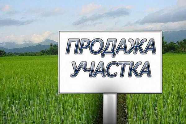 В Украине могут отменить мораторий на продажу земли