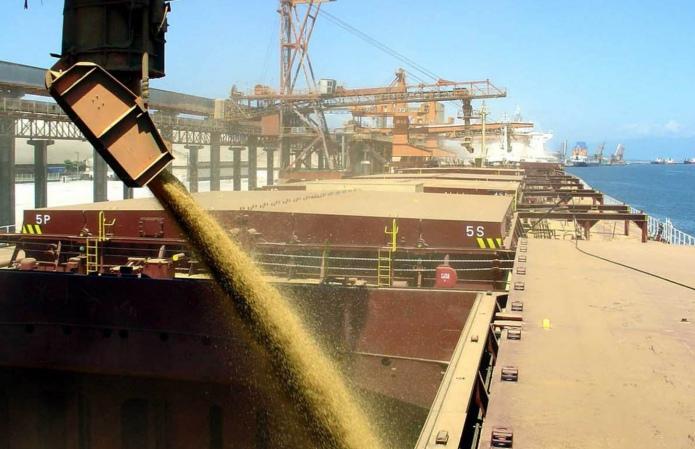 Объемы экспорта зерна из Украины резко выросли на четверть