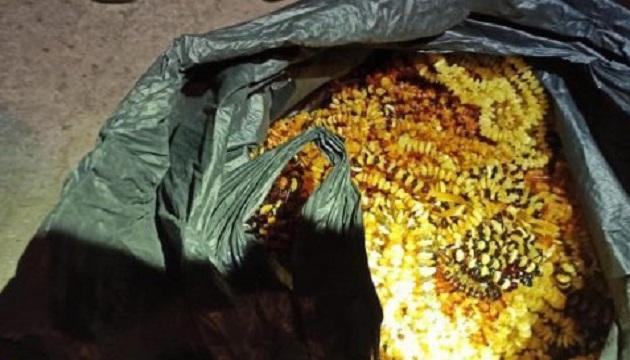 CБУ заблокировала масштабную контрабанду янтаря в Азию