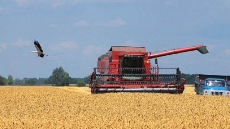 Кабмин направил аграриям 125 миллионов на компенсацию процентов по кредитам