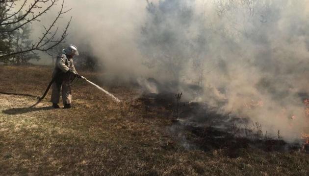 Житомирщина насчитала миллиард убытков от лесных пожаров весной