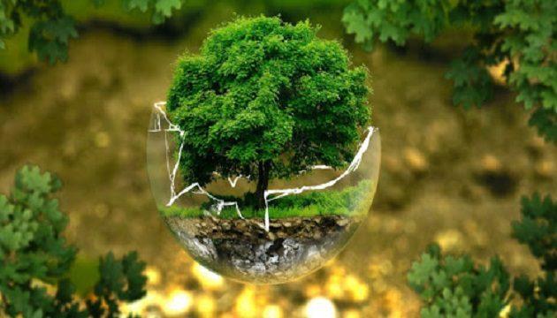 В минувшем году экологии Украины нанесен ущерб на свыше 2 млрд гривен - Госэкоинспекция