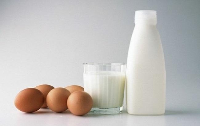 В Украине уменьшилось производство молока и яиц — Госстат