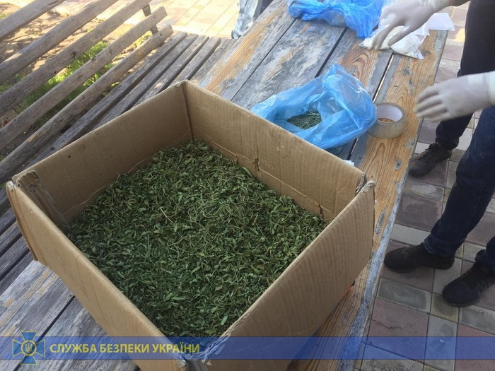 В Луганской области перекрыли канал контрабанды наркотиков, - СБУ