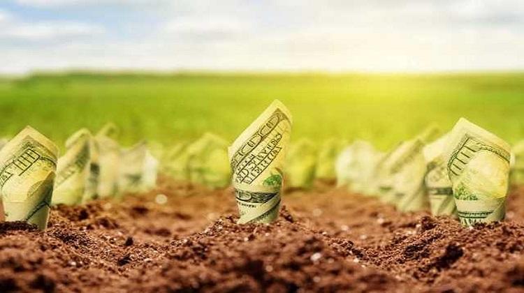 Рынок земли: за первый день было заключено всего три договора - Минагро