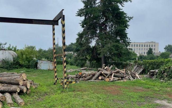Прокуратура разоблачила незаконную вырубку леса во время масштабных пожаров на Луганщине