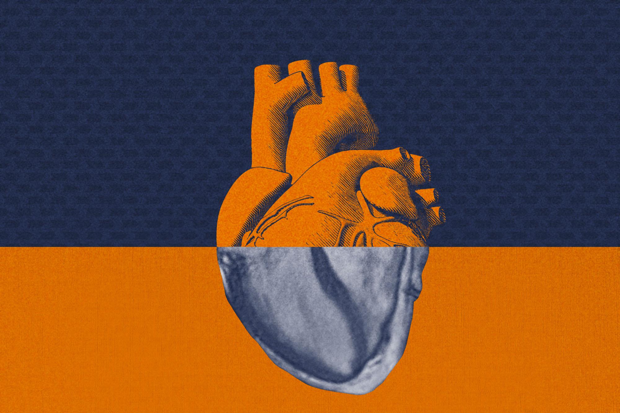 Вчені розробили нову технологію штучного інтелекту, яка здатна змінити якість візуалізації серця