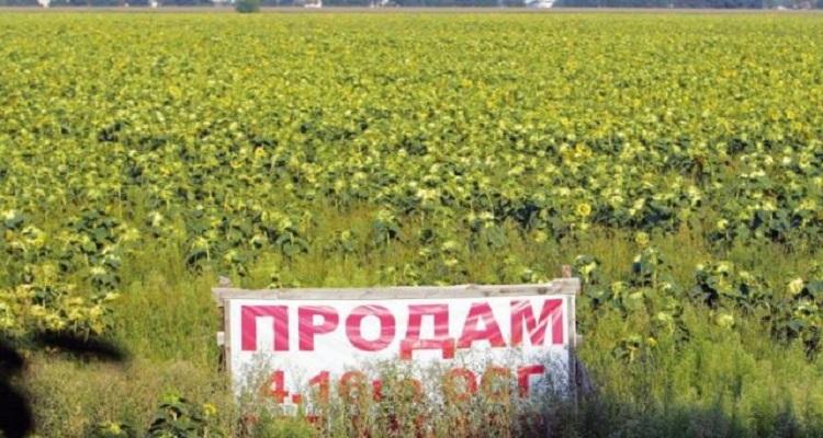 Рада открыла рынок земли