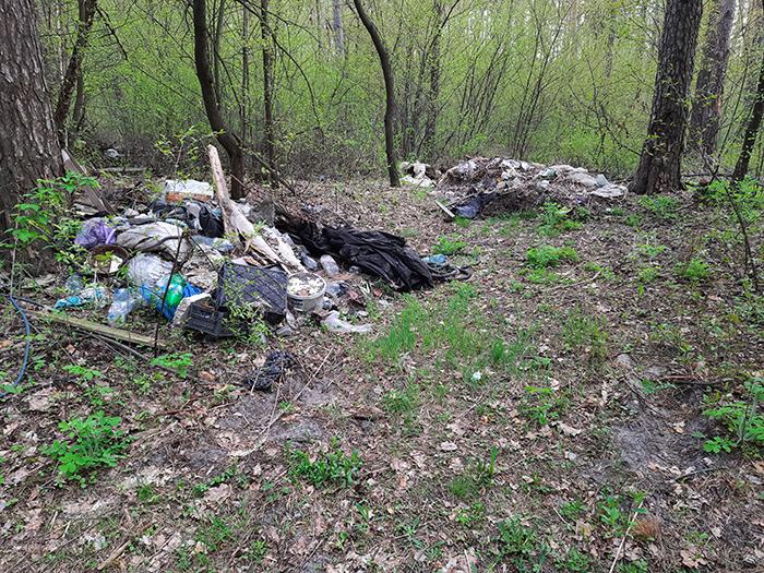Поки українці безконтрольно засмічують ліси та чекають на підвищення штрафів, у ЄС за таке саджають у в'язницю: приклади покарань