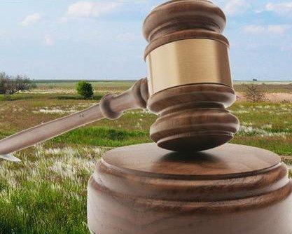 В августе на земельных торгах права на аренду продали на 12,5 миллиона