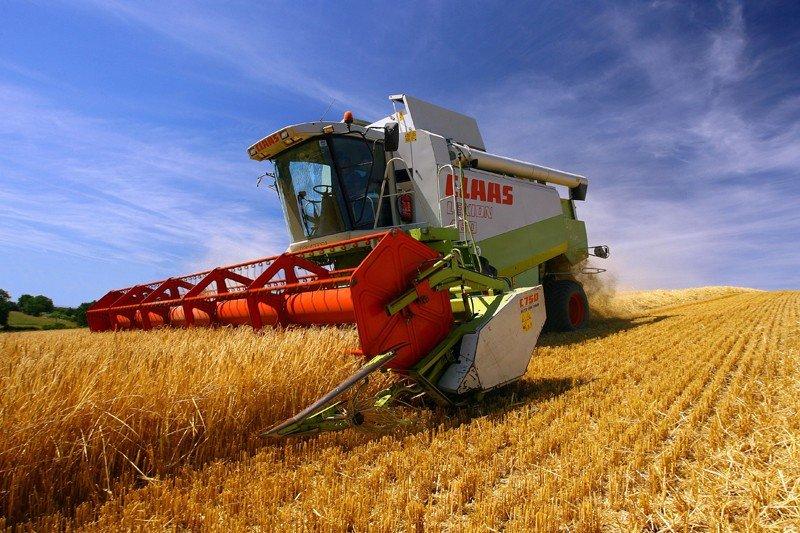 Аграрии намолотили 34,5 млн тонн зерновых и зернобобовых культур