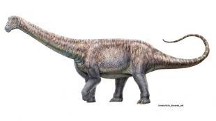Arackar licanantay – новый вид динозавра, найденный в Чили